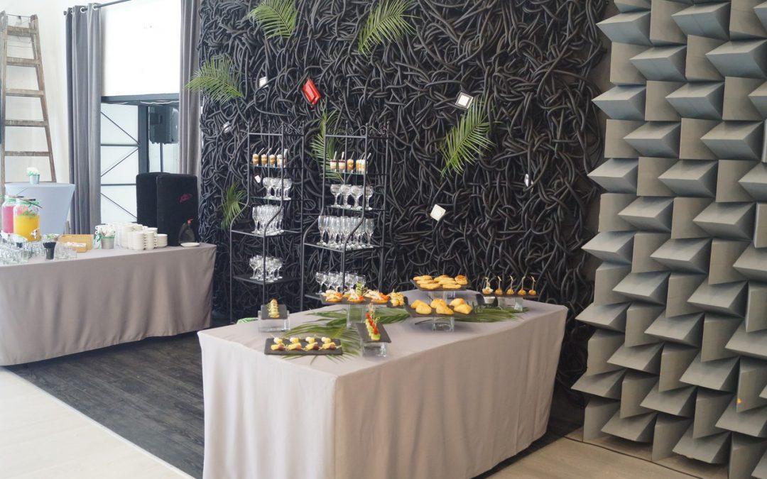 Фуршет на закрытой презентации для Schneider Electric, июнь 2017