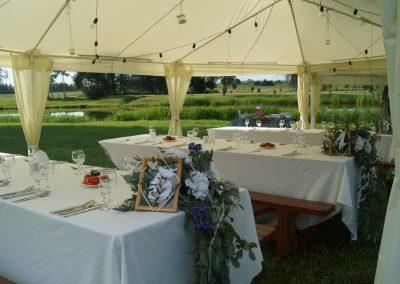 Свадьба в Загородном Клубе Свияга, июль 2017