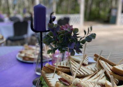 Пикник и welcome фуршет на загородном мероприятии, июль 2021